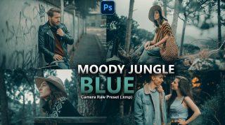 Moody Jungle Blue Camera Raw XMP Preset of 2021 for Free | Moody Jungle Blue Camera Raw Preset of 2021 Free XMP Preset