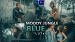 Moody Jungle Blue LUTs of 2021 | How to Colorgrade Moody Jungle Blue Effect to Photos & Videos in Photoshop & Premiere Pro