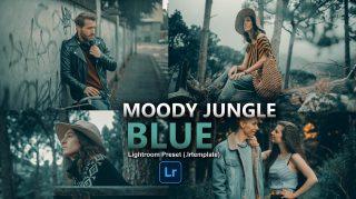 Moody Jungle Blue Lightroom Presets of 2021 for Free | Moody Jungle Blue Desktop Lightroom Presets of 2021