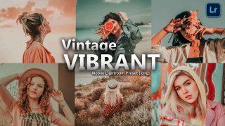Vintage Vibrant Lightroom Mobile Presets DNG of 2021 for Free | Vintage Vibrant Mobile Lightroom Preset DNG of 2021 for free