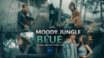 Moody Jungle Blue Lightroom Mobile Presets DNG of 2021 for Free | Moody Jungle Blue Mobile Lightroom Preset DNG of 2021 for free