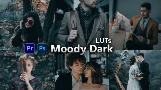 Moody Dark Forest LUTs of 2021 | How to Colorgrade Moody Dark Forest Effect to Photos & Videos in Photoshop & Premiere Pro
