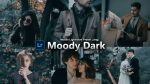 Moody Dark Forest Lightroom Mobile Presets DNG of 2021 for Free | Moody Dark Forest Mobile Lightroom Preset DNG of 2021 for free