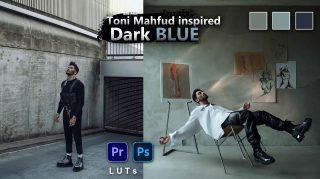 Toni MAHFUD Dark Blue LUTs of 2021 | How to Colorgrade Toni MAHFUD Dark Blue Effect to Photos & Videos in Photoshop & Premiere Pro