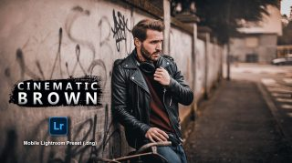 Cinematic Brown Lightroom Mobile Presets DNG of 2021 for Free | Cinematic Brown Mobile Lightroom Preset DNG of 2021 for free